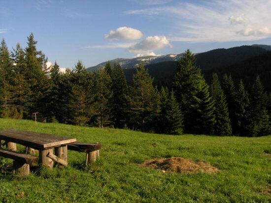 Planina Igman je popularna destinacija za planinarenje i skijanje.
