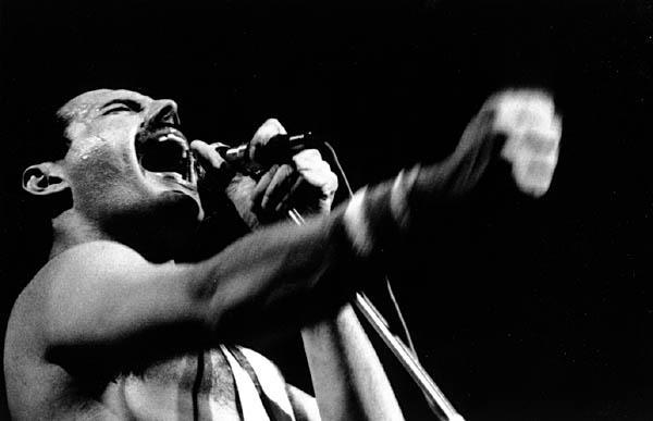 Freddie Mercury (1946-1991)