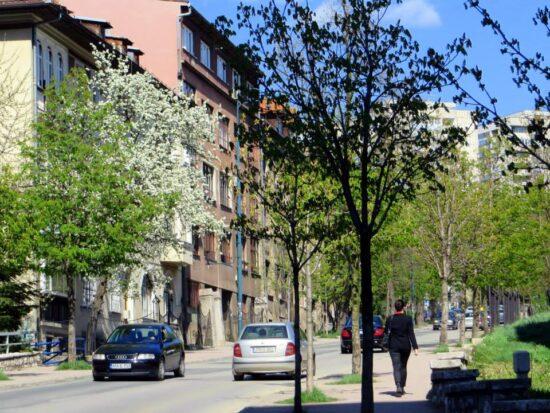 Ulica Koševo