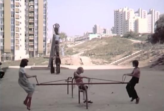 Alipašino polje, 1981 godine