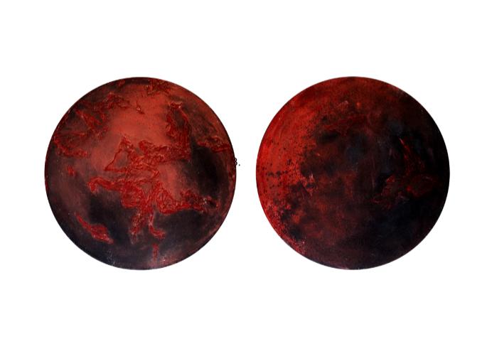 Razglednica s Marsa, Zehrina Karić