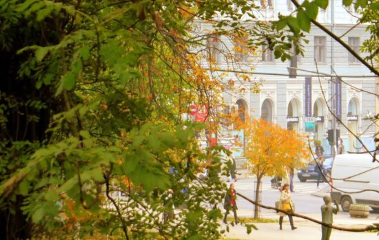 Kišno, ali prekrasno (Sarajevo, 22. oktobar 2016, foto: Mina Coric)