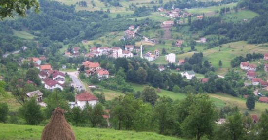Stupari
