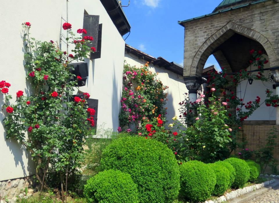 Baščaršijske ruže (Sarajevo, 04. juni 2015, foto: Mina Coric)