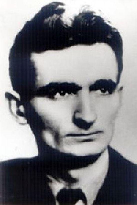 Vladimir Peric Valter